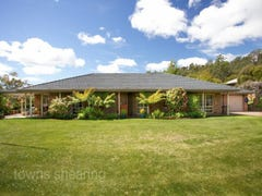 114 Panorama Road, Blackstone Heights, Tas 7250