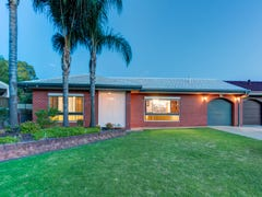 31 Packer Crescent, Paradise, SA 5075