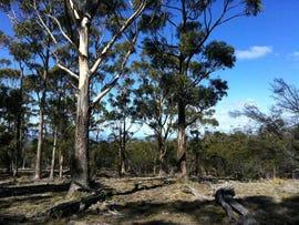 . Old Coach Road, Cranbrook, Tas 7190