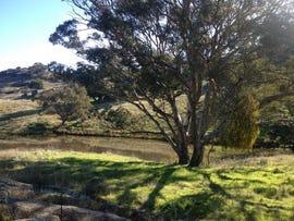 6154 HOLBROOK ROAD, WAGGA WAGGA, Wagga Wagga, NSW 2650