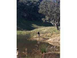 Lot 6, 6154 Holbrook Road, Wagga Wagga, NSW 2650