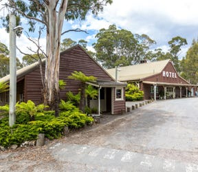 15573 Lyell Highway, Derwent Bridge, Tas 7140