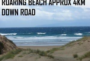 320 Roaring Beach, Nubeena, Tas 7184