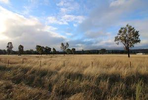 Frog Rock Road, Mudgee, NSW 2850