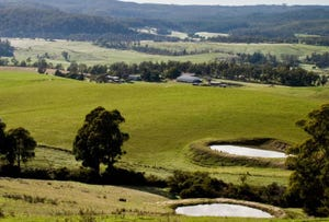 2241 Pipers River Rd, Pipers River, Tas 7252