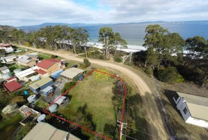 Lot 15 Big Roaring Beach Road, Surveyors Bay, Tas 7116