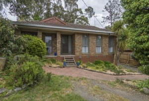 119 Boak Avenue, Mount Helen, Vic 3350