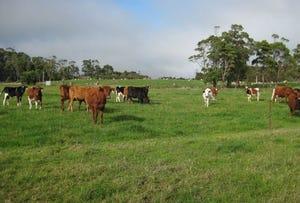 45 Poilinna Road, Edith Creek, Tas 7330