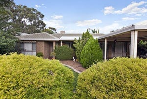 14 Currumbin Avenue, Blakeview, SA 5114