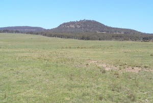 Bylong Valley Way, Mudgee, NSW 2850