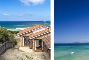 20 Rennies Beach Close, Ulladulla, NSW 2539