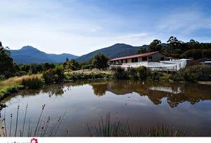 60 Misty Hill Road, Mountain River, Tas 7109