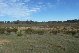 Lot 119, Taylors Flat Road, Taylors Flat, NSW 2586