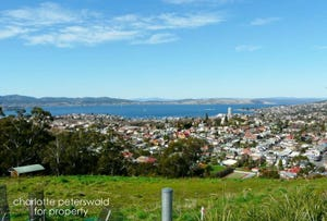 73 Liverpool Crescent, West Hobart, Tas 7000