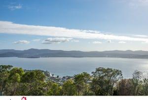 Lot 1/40 Nicholas Drive, Sandy Bay, Tas 7005