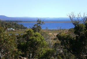 Lot 587 Little Dog Court, Miena, Tas 7030