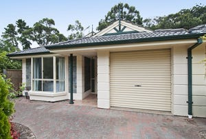 12 John Fisher Drive, Torrens Park, SA 5062