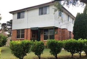 30 Lowana Street, Villawood, NSW 2163