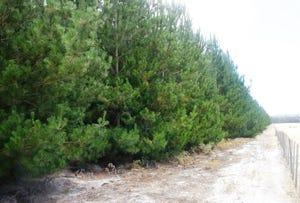 . Bridport Road, Jetsonville, Tas 7260