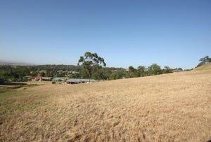 8 McDougall's Close, Singleton, NSW 2330