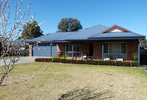 3 McMillan Place, Forbes, NSW 2871
