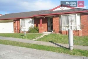 52 Browtop Road, Narre Warren, Vic 3805