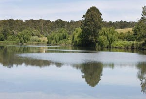 . WILLIAMS RIVER ESTATE, Clarence Town, NSW 2321