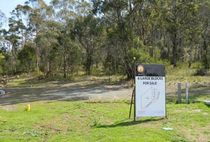 Old Convict Road, Orford, Tas 7190