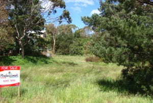 293 Carlton Beach Rd, Carlton, Tas 7173