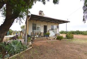 23 Oleander Drive, Dareton, NSW 2717