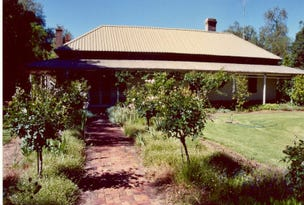 Old Morago Road, Deniliquin, NSW 2710