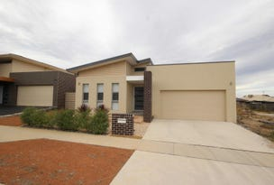 11 Volpato Street, Forde, ACT 2914