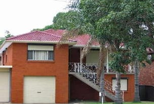 1011 The Horsley Drive, Wetherill Park, NSW 2164