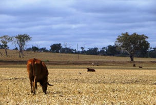 829 ACRES GRAZING & FARMING, Bell, Qld 4408