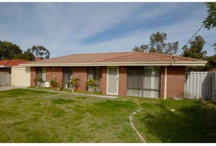 31 Collins Road, Willetton, WA 6155