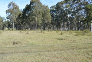 Lot 202 Lakes Folly Drive, Branxton, NSW 2335