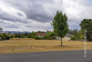 2 Skyline Avenue, Grindelwald, Tas 7277