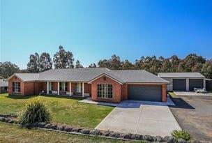 12 Llanrian Drive, Singleton, NSW 2330