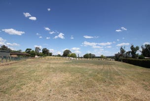 3 Yarra Court, Mudgee, NSW 2850