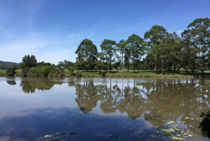 Lot 308 'Riverdowns Estate', Limeburners Creek Road, Clarence Town, NSW 2321