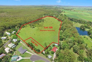 100 -101 Lot 100 Hills Road & Lot 101 Echidna Place, Rileys Hill, NSW 2472