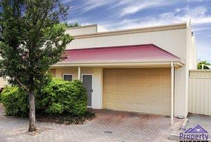 13 Little Sturt Street, Adelaide, SA 5000