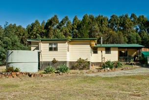 474 River Road, Reedy Marsh, Tas 7304