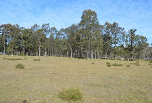 Lot 206 Kelly Close, Branxton, NSW 2335