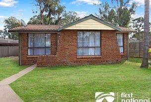 313 Popondetta Road, Bidwill, NSW 2770