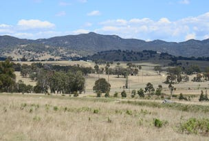 215 Mount Spirabo Road, Tenterfield, NSW 2372