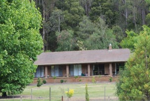 346 Wilmot Road, Forth, Tas 7310