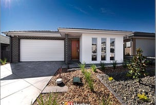 8 Engel Street, Coombs, ACT 2611