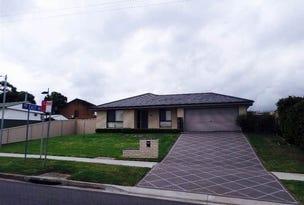 60 Maize Street, Tenambit, NSW 2323