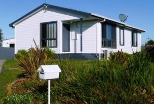 13 Rees Street, Wynyard, Tas 7325